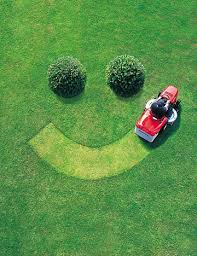 Backyard Smiley